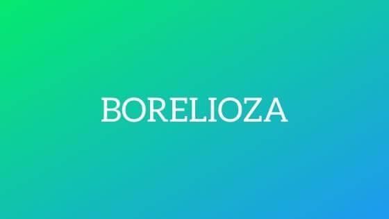 borreliosis